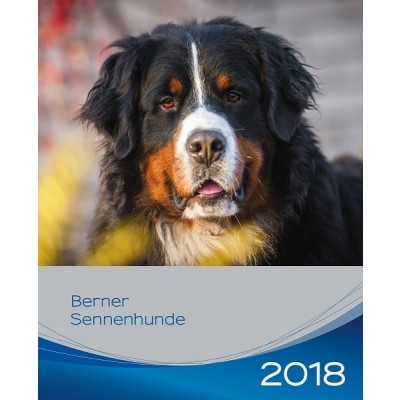 Kalender Berner Sennenhond 2018 - Trixie - voorblad