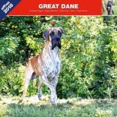 Kalender Deense Dog / Duitse Dog 2018 - Affixe Editions - voorblad