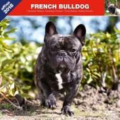 Kalender Franse Bulldog 2018 - Affixe Editions - voorblad