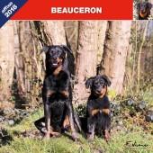Kalender Beauceron 2018 - Affixe Editions - voorblad