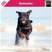 Kalender Rottweiler 2016