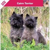Kalender Cairn Terrier 2016