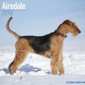 Kalender Airedale Terrier 2018 - Avonside Publishing - voorblad