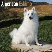 Kalender American Eskimo Dog 2018 - Avonside Publishing - voorblad