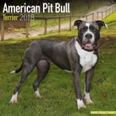 Kalender American Pitt Bull Terrier 2018 - Avonside Publishing - voorblad