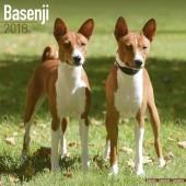 Kalender Basenji 2018 - Avonside Publishing - voorblad