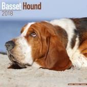 Kalender Basset Hound 2018 - Avonside Publishing - voorblad