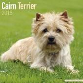 Kalender Cairn Terrier 2018 - Avonside Publishing - voorblad