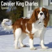 Kalender Cavalier King Charles Spaniel 2018 - Avonside Publishing - voorblad