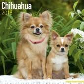 Kalender Chihuahua 2018 - Avonside Publishing - voorblad