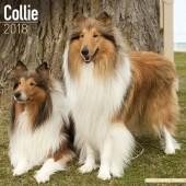 Kalender Schotse Herdershond / Collie 2018 - Avonside Publishing - voorblad
