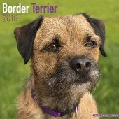 Kalender Border Terrier 2018 - Avonside Publishing - voorblad