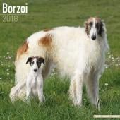 Kalender Barsoi 2018 - Avonside Publishing - voorblad