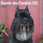 Kalender Bouvier des Flandres (US) 2018 - Avonside Publishing - voorblad