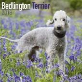 Kalender Bedlington Terrier 2018 - Avonside Publishing - voorblad
