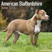 Kalender American Staffordshire Terrier 2018 - Avonside Publishing - voorblad