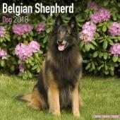 Kalender Belgische Herdershond 2018 - Avonside Publishing - voorblad