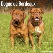 Kalender Bordeaux Dog 2018 - Avonside Publishing - voorblad