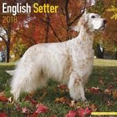 Kalender Engelse Setter 2018 - Avonside Publishing - voorblad