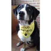 Gele Hond Signaleringsbandana - om de hals gedragen
