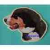 Sticker Entlebucher 01 - Ca. 15 * 15 cm - links