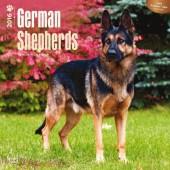 Kalender Duitse Herdershond 2016