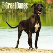 Kalender Deense Dog / Duitse Dog 2016