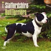 Kalender Staffordshire Bull Terrier 2016