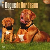 Kalender Bordeaux Dog 2016