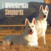 Kalender Zwitserse Witte Herdershond 2016