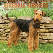 Kalender Airedale Terrier 2018 - BrownTrout - voorblad
