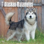 Kalender Alaska Malamute 2018 - BrownTrout - voorblad