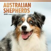 Kalender Australian Shepherd 2018 - BrownTrout - voorblad