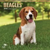 Kalender Beagle 2018 - BrownTrout - voorblad