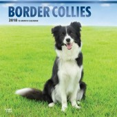 Kalender Border Collie 2018 - BrownTrout - voorblad