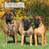 Kalender Bullmastiff 2018 - BrownTrout - voorblad