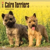 Kalender Cairn Terrier 2018 - BrownTrout - voorblad