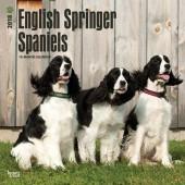 Kalender Engelse Springer Spaniel 2018 - BrownTrout - voorblad