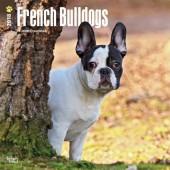 Kalender Franse Bulldog 2018 - BrownTrout - voorblad