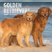 Kalender Golden Retriever 2018 - BrownTrout - voorblad