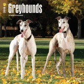 Kalender Greyhound 2018 - BrownTrout - voorblad