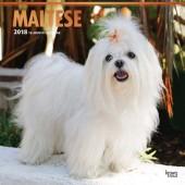 Kalender Maltezer 2018 - BrownTrout - voorblad
