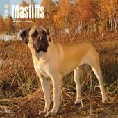 Kalender Mastiff 2018 - BrownTrout - voorblad