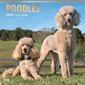 Kalender Poedel 2018 - BrownTrout - voorblad