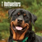 Kalender Rottweiler 2018 - BrownTrout - voorblad