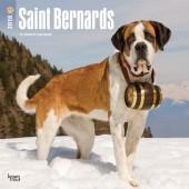 Kalender Sint Bernard 2018 - BrownTrout - voorblad