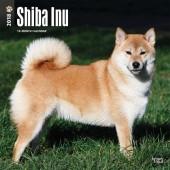 Kalender Shiba Inu 2018 - BrownTrout - voorblad