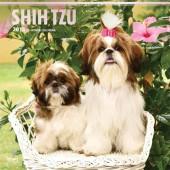 Kalender Shih Tzu 2018 - BrownTrout - voorblad