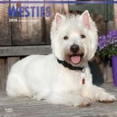 Kalender West Highland White Terrier 2018 - BrownTrout - voorblad