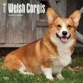Kalender Welsh Corgi 2018 - BrownTrout - voorblad